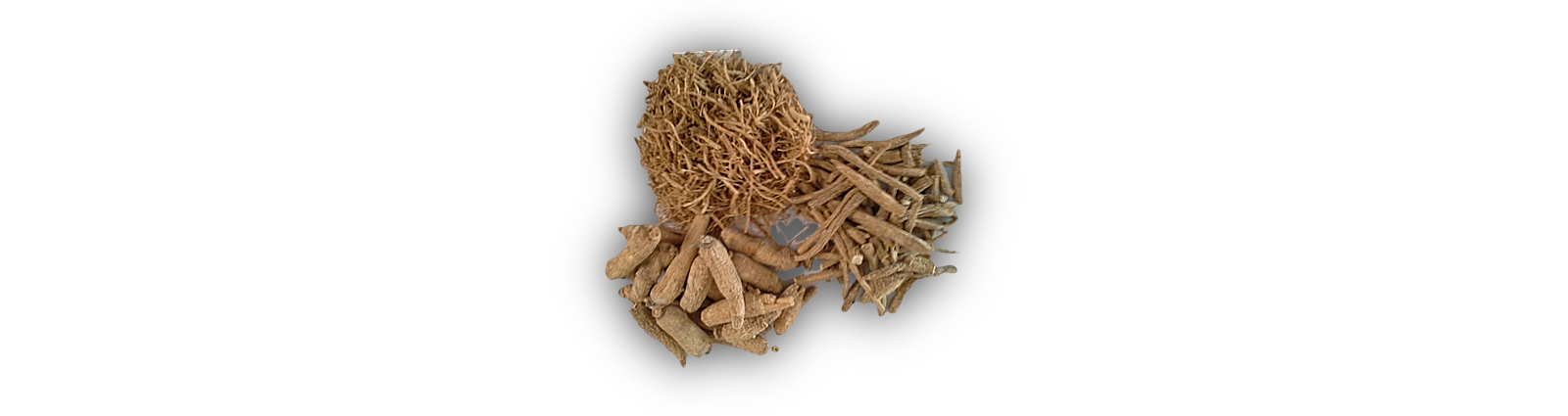 Kaiser-Farms-Ginseng-Whole-Root