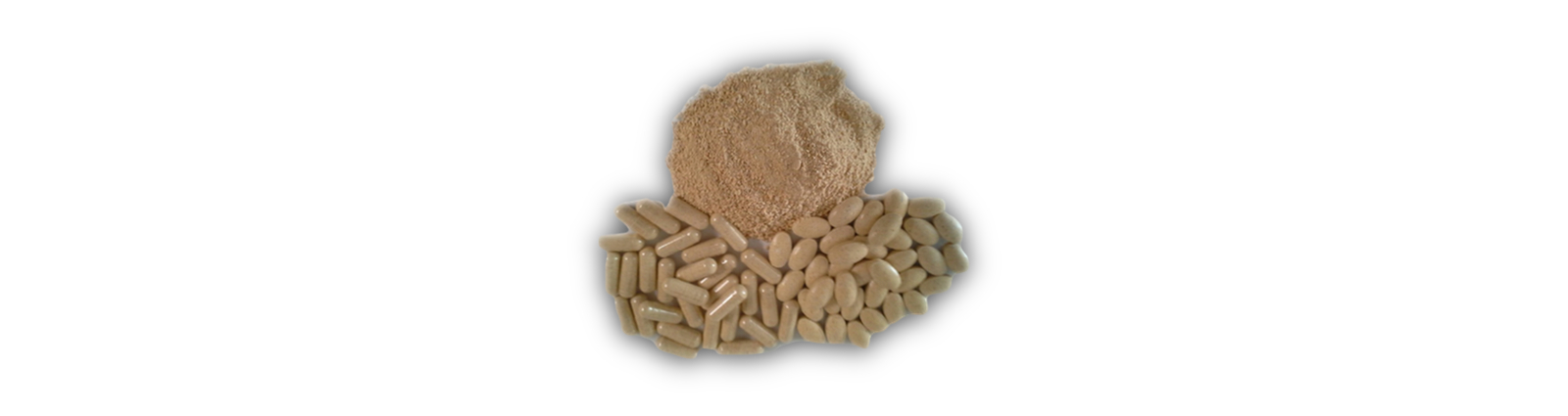 Kaiser-Farms-Wisconsin-Ginseng-Tablets-and-Powder